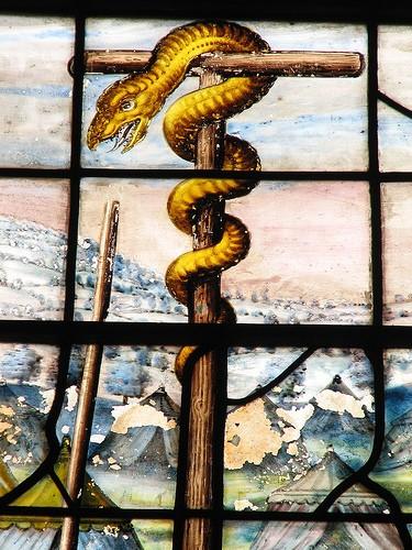 snake-pole