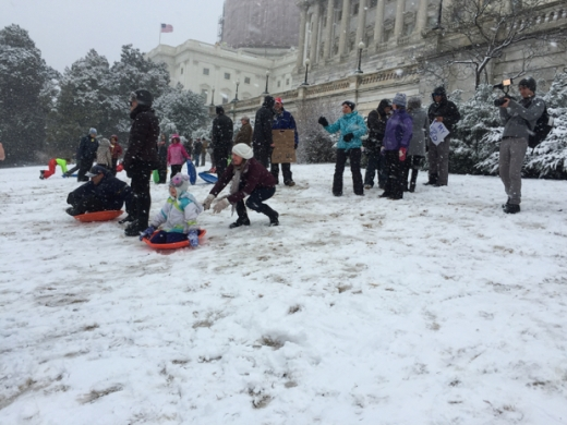 These snowy scofflaws don't care what Congress thinks. Photographs by Benjamin Freed.